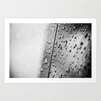Black And White Drops Art Print