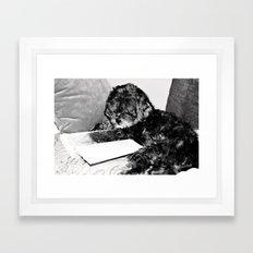 Darwin would appreciate this Framed Art Print