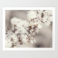 Frosted Weed Art Print