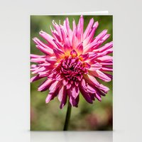 Mum Explosion Stationery Cards