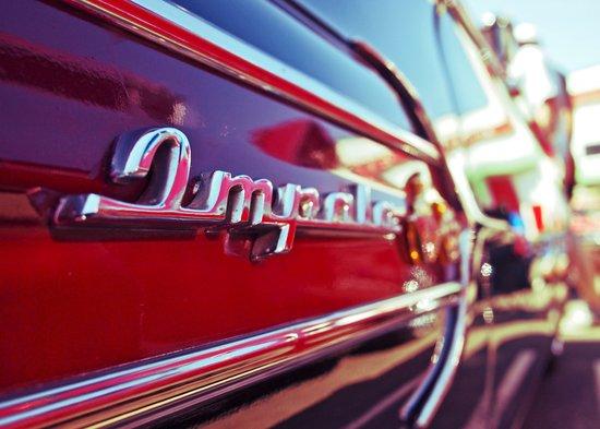 Impala blur Canvas Print