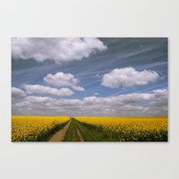 Clouds and Flowers Canvas Print