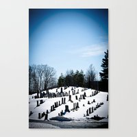 i see skies of blue Canvas Print