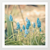 Forest Of Blue Art Print