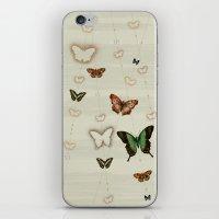 Butterfly Coordinates iii iPhone & iPod Skin