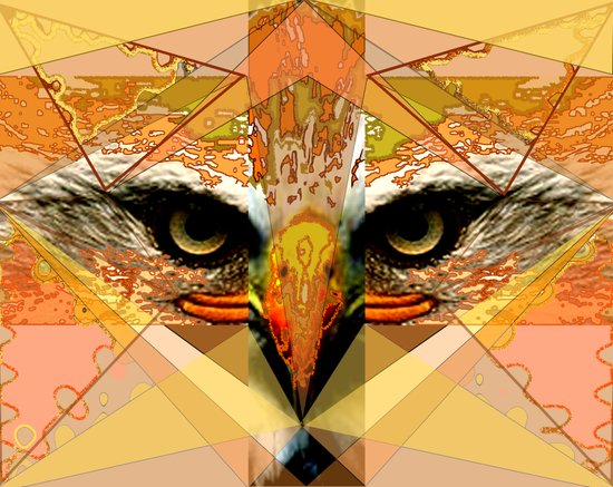 Eagle Eyes Canvas Print