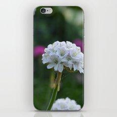 It's Reality iPhone & iPod Skin