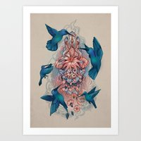 kolibri Art Print