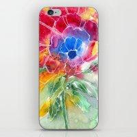 Rainbrose 2 iPhone & iPod Skin