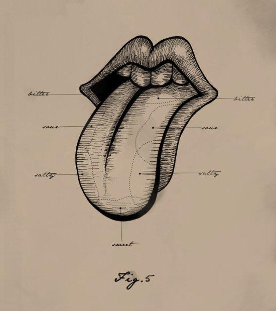 Fig. 5  Tongue Art Print