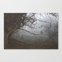 Horse In The Fog Pt 2 Canvas Print