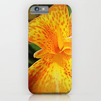 iPhone & iPod Case featuring 'TIGER TIGER' by Dwayne Brown