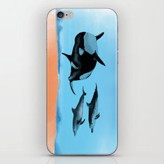 Orca and Dolphin iPhone & iPod Skin