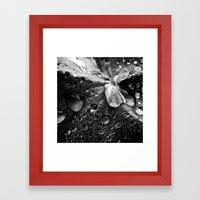 water drops XVII Framed Art Print