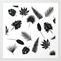 Botanical study - Fern Leaves pattern Art Print