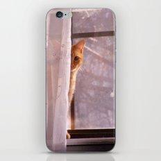 hi iPhone & iPod Skin