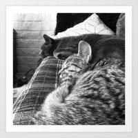 Nap Time... Art Print