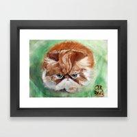 Grumpy Persian Framed Art Print