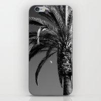 Desert Moon iPhone & iPod Skin