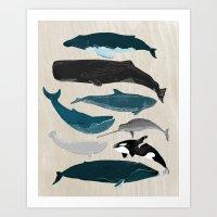 Whales - Pod Of Whales P… Art Print