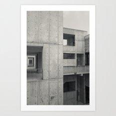 Salk 1 Art Print