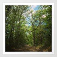 Pathway To Heaven Art Print