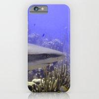 Shark Swimming Past iPhone 6 Slim Case