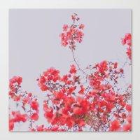 Sweet Pink  Canvas Print