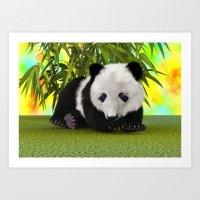 Panda Bear Cub Art Print