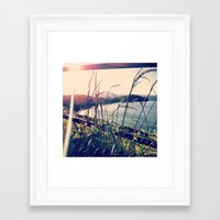 Floral Sunsets In May Framed Art Print