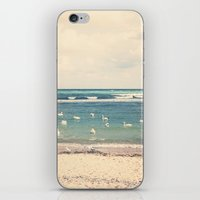 Swan Sea iPhone & iPod Skin