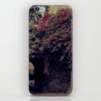 Mission Bougainvillea iPhone & iPod Skin