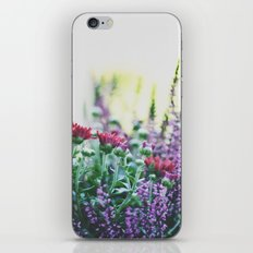 FANTASY COLORS iPhone & iPod Skin