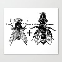 A Fly Marrying A Bumbleb… Canvas Print