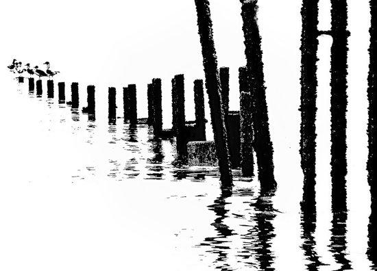 MONO SEA Art Print