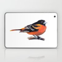 Oriole Laptop & iPad Skin