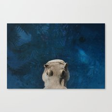 Hippo on the Tropic of Capricorn  Canvas Print