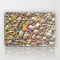 Seashells on the Shore Laptop & iPad Skin