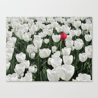 The Odd One Out Canvas Print