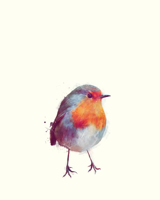 Winter Robin Art Print