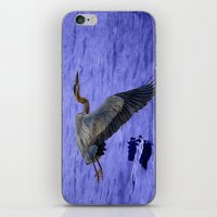 Great blue heron in fly iPhone & iPod Skin
