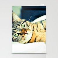 Кошка Stationery Cards