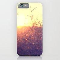 Evening In Summer iPhone 6 Slim Case
