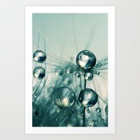 One Seed With Blue Drops Art Print