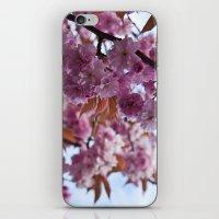 Spring is Near II iPhone & iPod Skin
