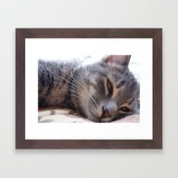 Sleepy Kitty Framed Art Print