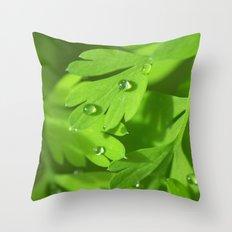 Spring Morning 412 Throw Pillow