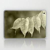 The curtain Laptop & iPad Skin