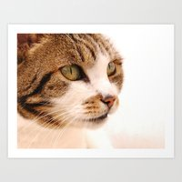Best Cat In Town Art Print