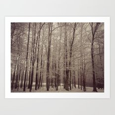 Indiana Winter Art Print